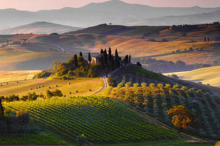 Toscana. Terroir d'eccellenza e alta enologia