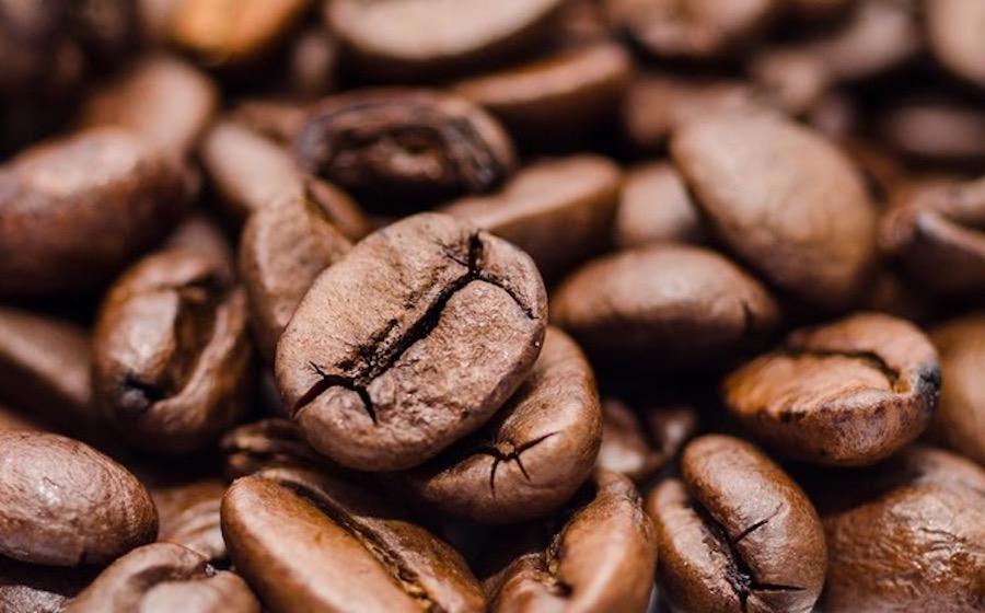 chicco di caffè verde sul sud africa