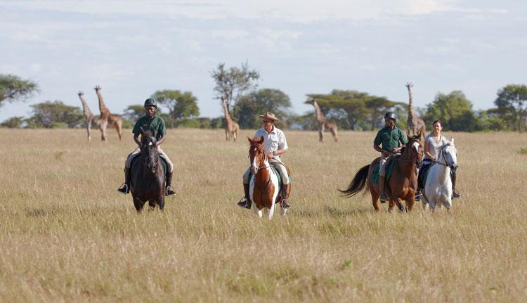 Singita-Horse-Safari-(14)-1