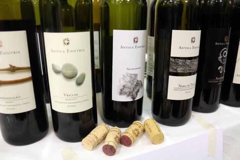 Il Vino che ascolta la terra: Antica Enotria