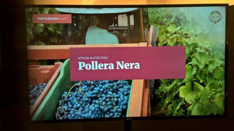 Conoscere la Toscana tra paesaggi, arte, vino e cibo: alla presentazione a Firenze di Visittuscany.com